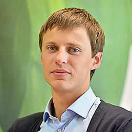 Bestuzhev Pavel V.